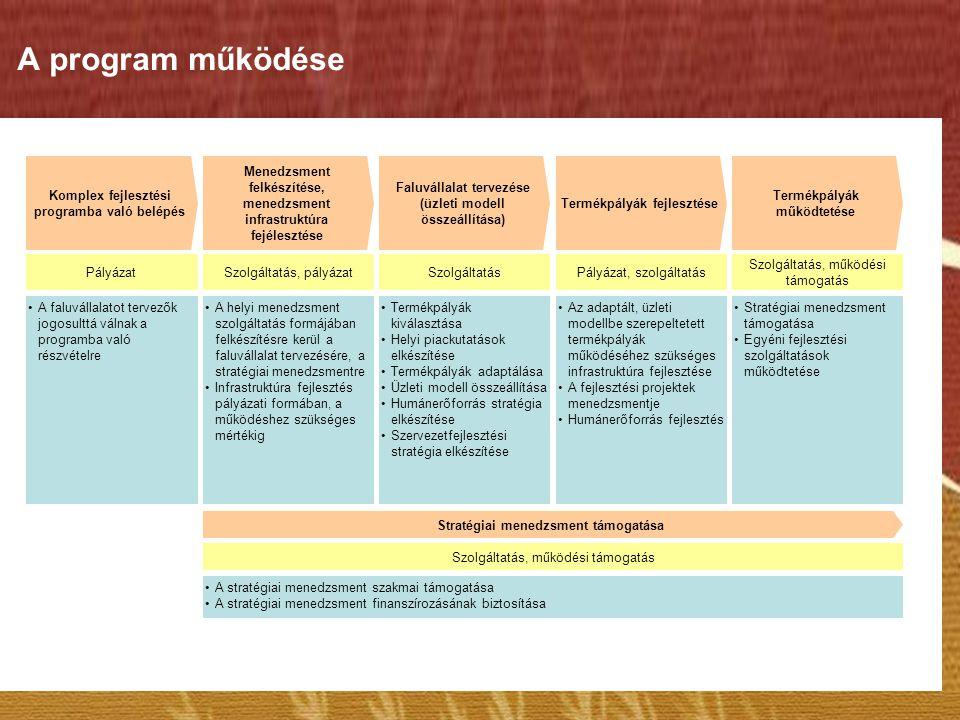 A program működése Komplex fejlesztési programba való belépés