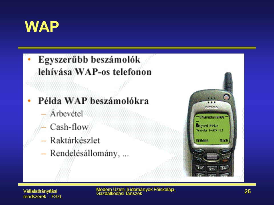 WAP Vállalatirányítási rendszerek - FSzL