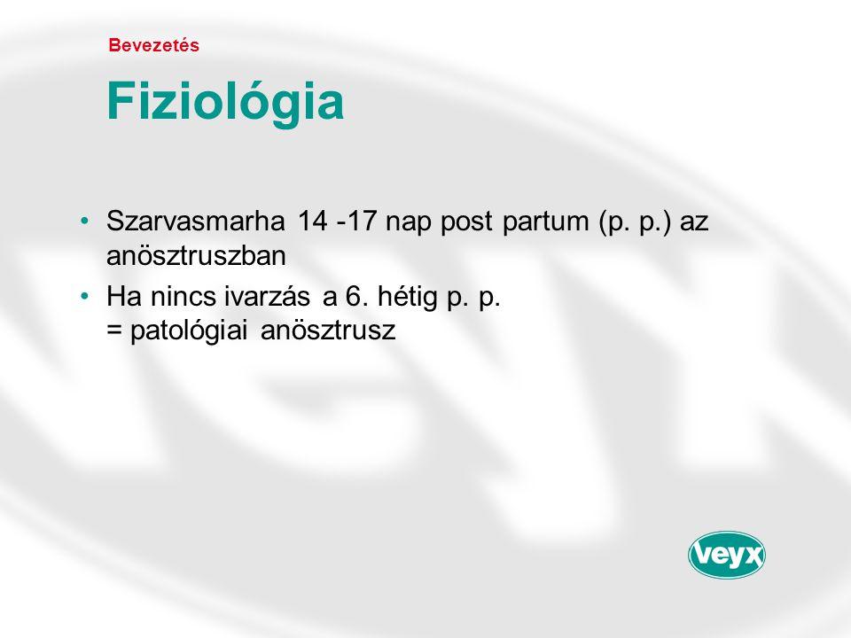 Bevezetés Fiziológia. Szarvasmarha 14 -17 nap post partum (p.