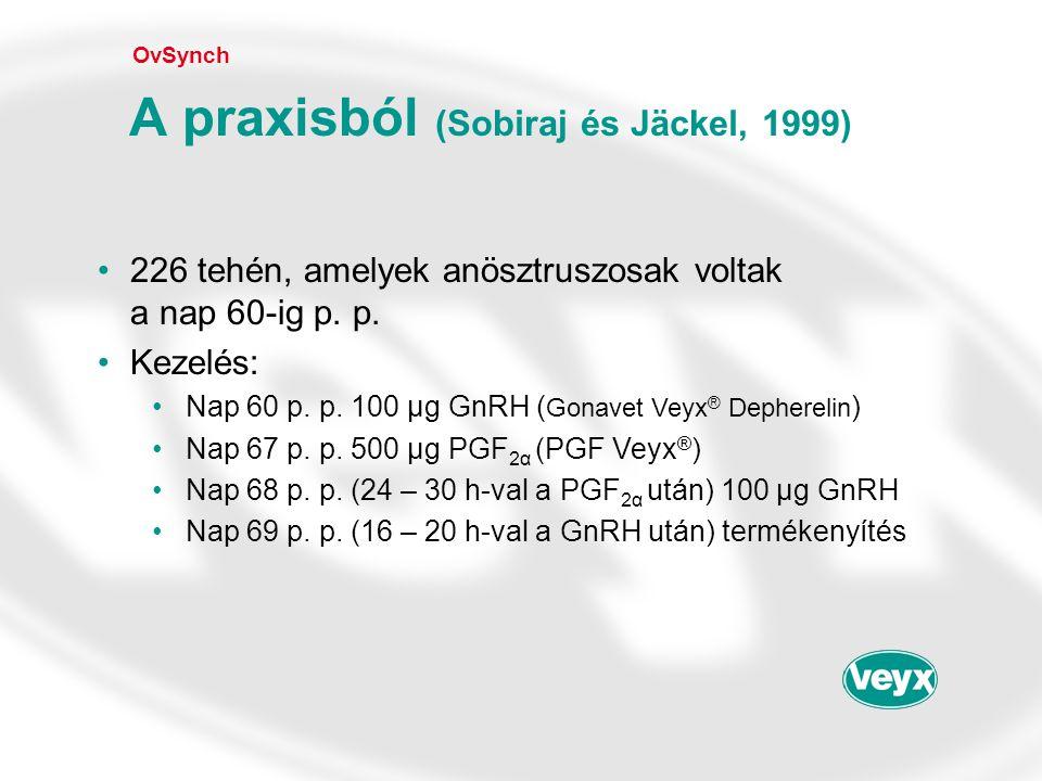 A praxisból (Sobiraj és Jäckel, 1999)