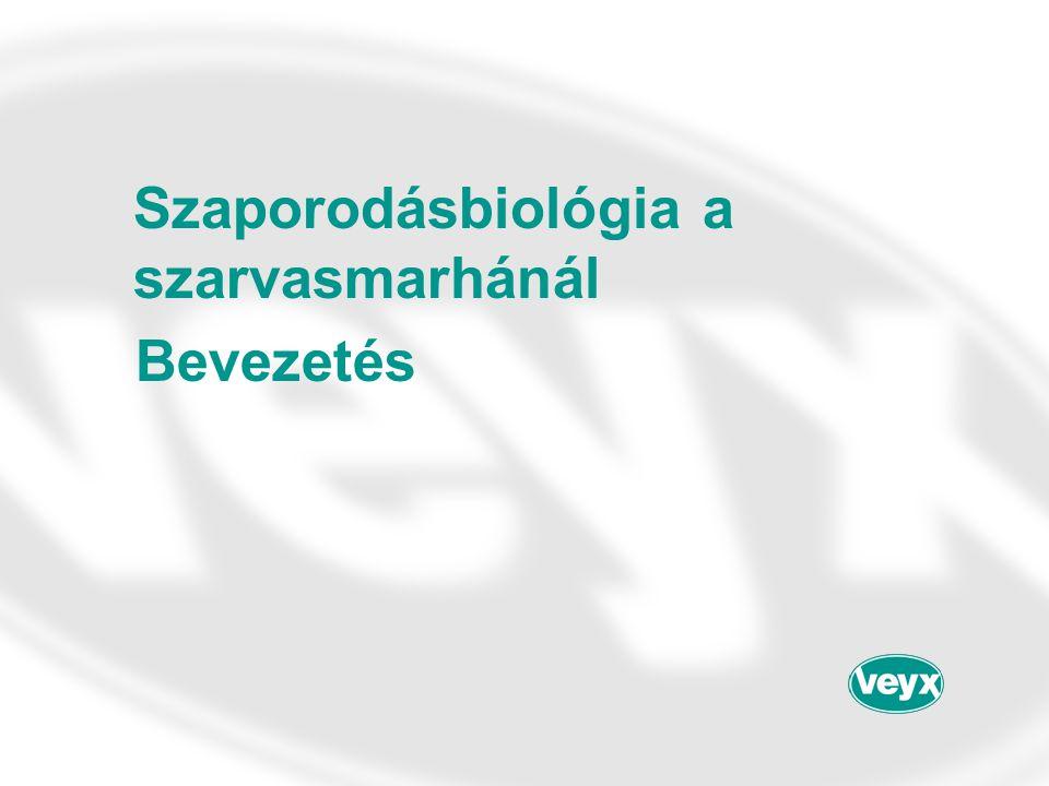 Szaporodásbiológia a szarvasmarhánál