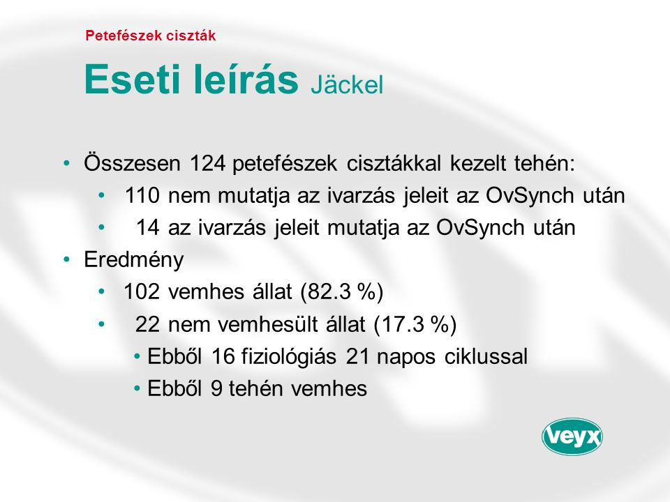 Eseti leírás Jäckel Összesen 124 petefészek cisztákkal kezelt tehén: