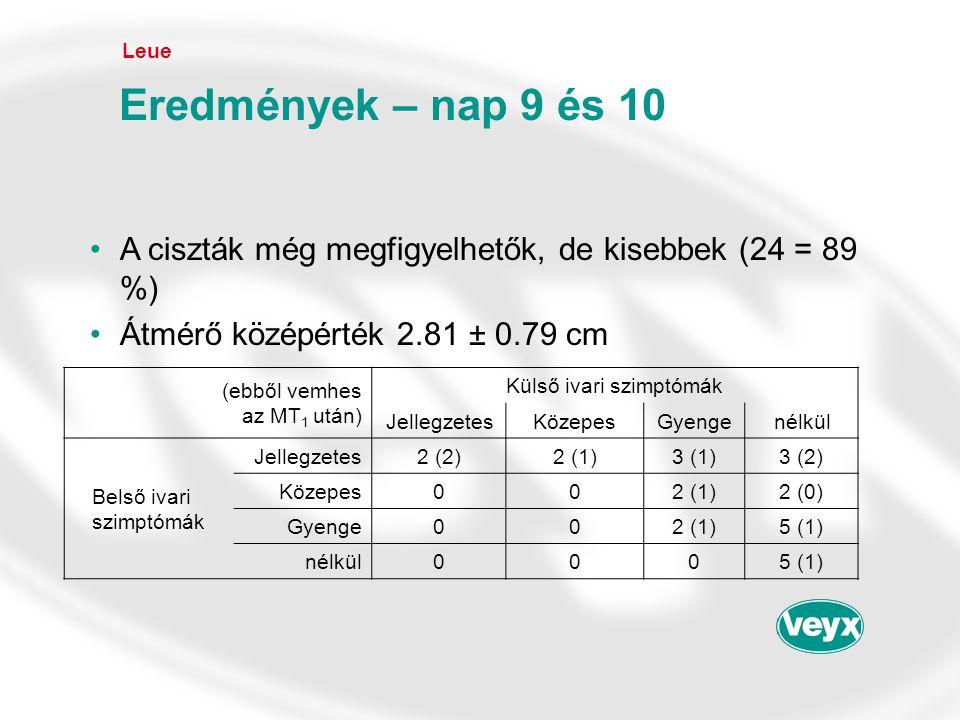 Leue Eredmények – nap 9 és 10. A ciszták még megfigyelhetők, de kisebbek (24 = 89 %) Átmérő középérték 2.81 ± 0.79 cm.