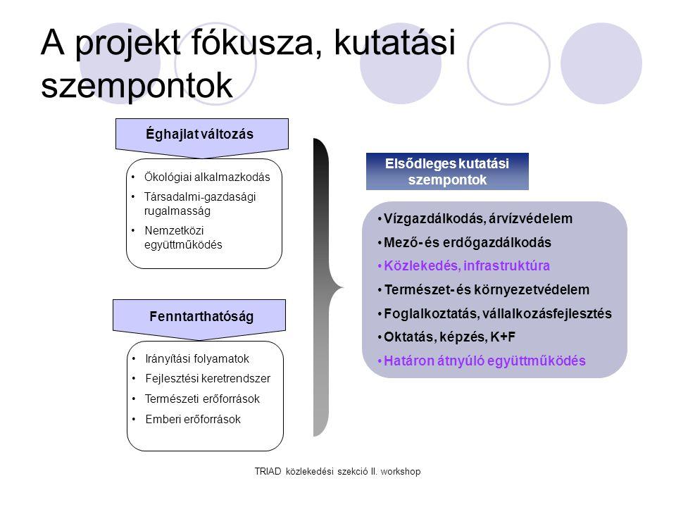 A projekt fókusza, kutatási szempontok