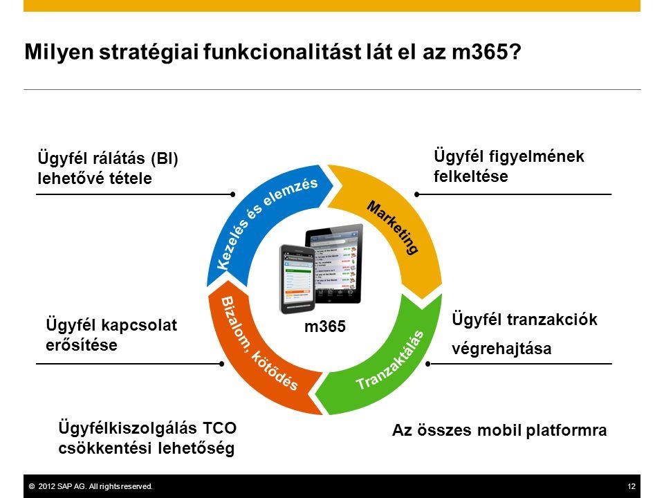 Milyen stratégiai funkcionalitást lát el az m365