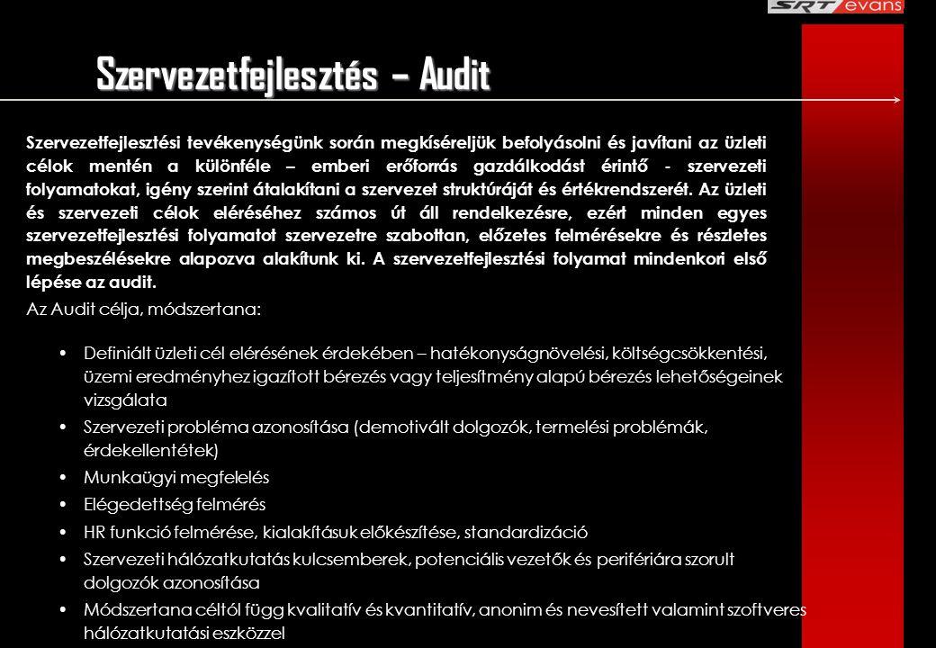 Szervezetfejlesztés – Audit