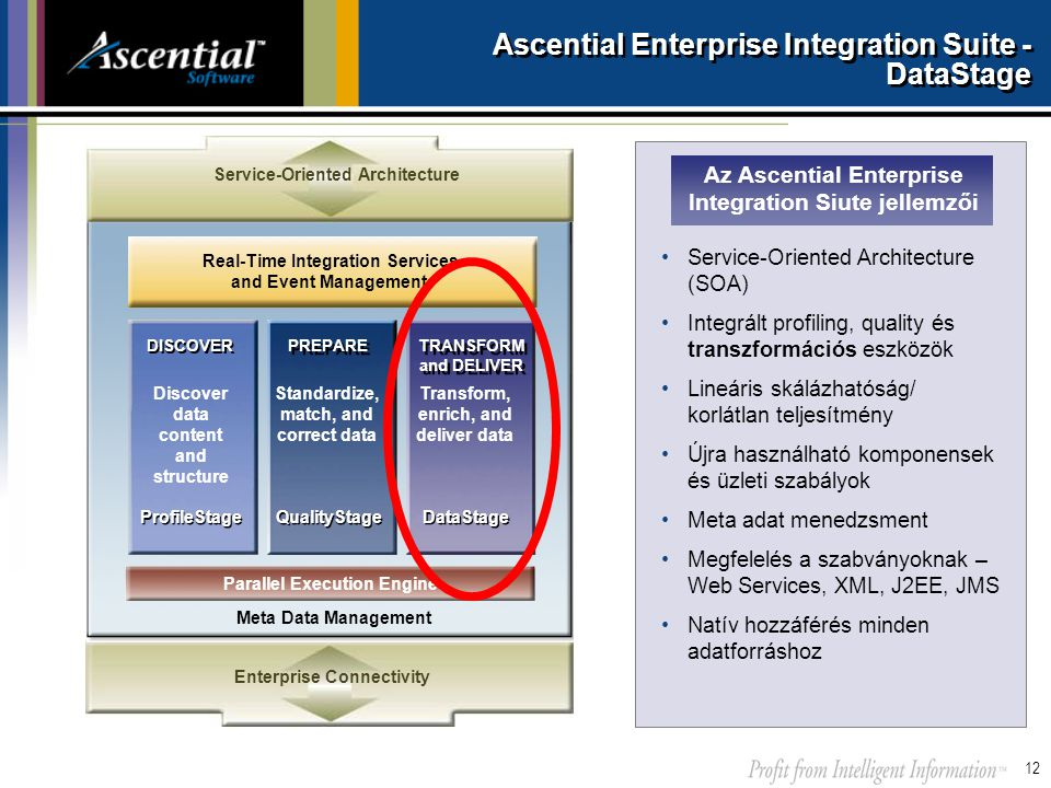 Ascential Enterprise Integration Suite - DataStage