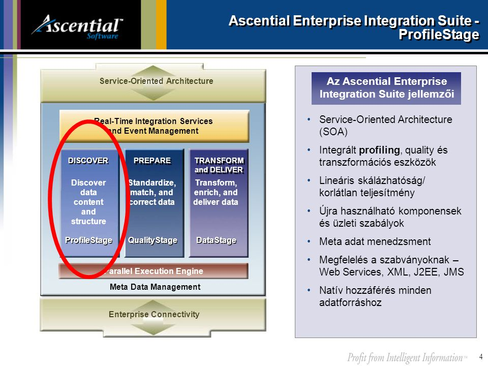 Ascential Enterprise Integration Suite - ProfileStage