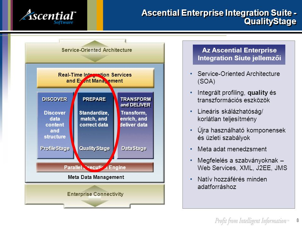 Ascential Enterprise Integration Suite - QualityStage