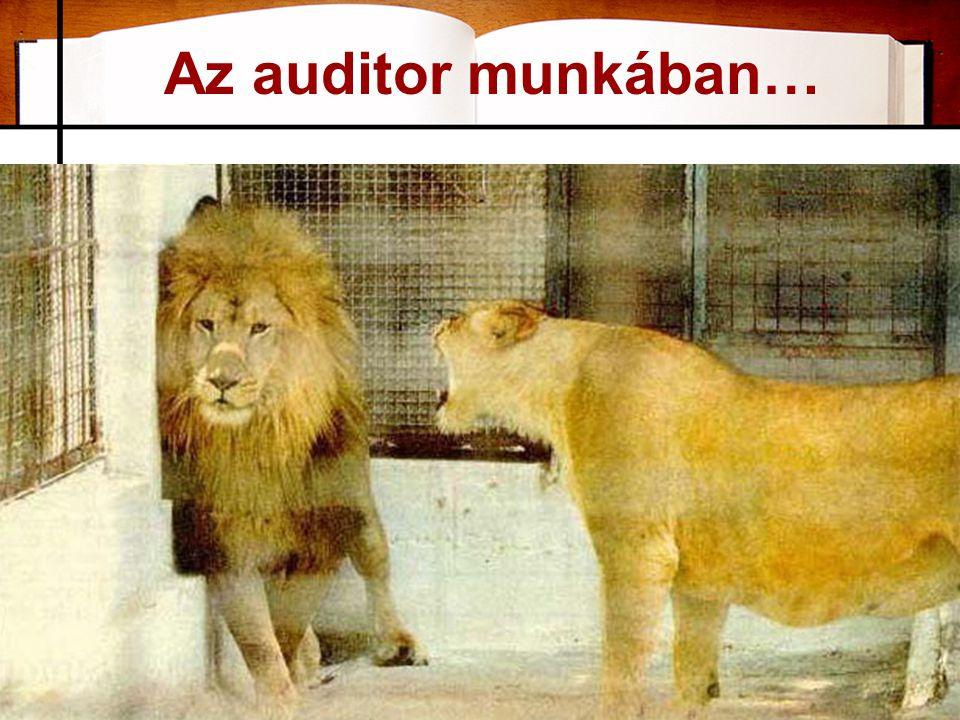 Az auditor munkában…