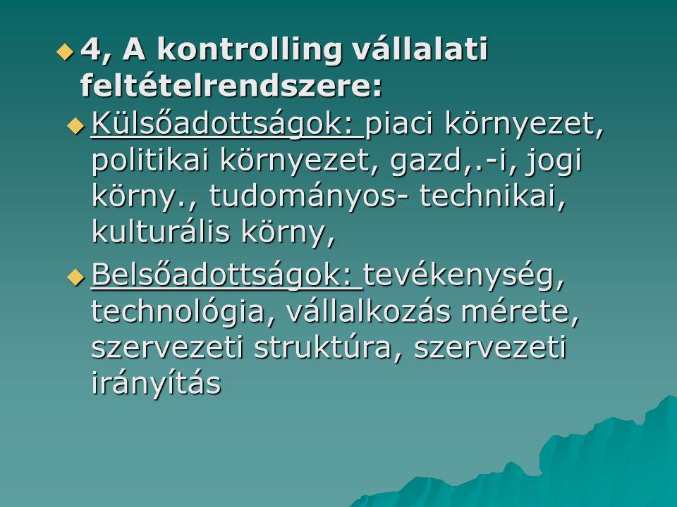 4, A kontrolling vállalati feltételrendszere: