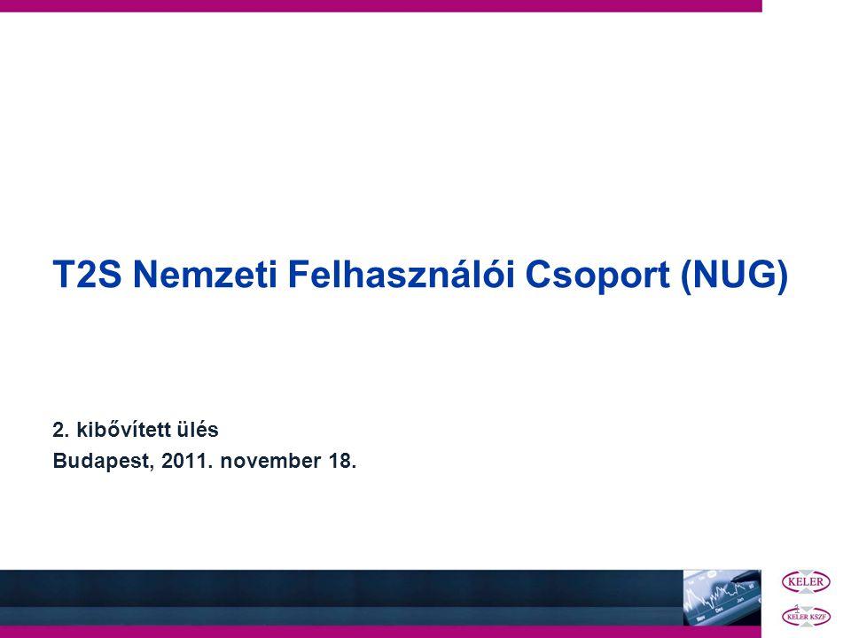 T2S Nemzeti Felhasználói Csoport (NUG)