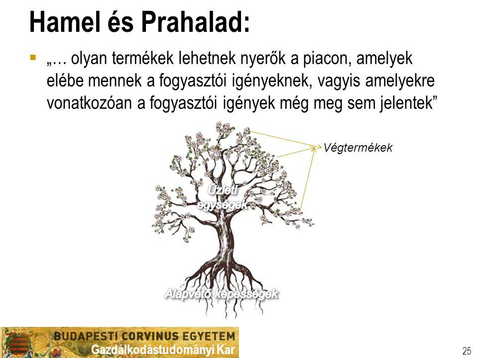 Hamel és Prahalad: