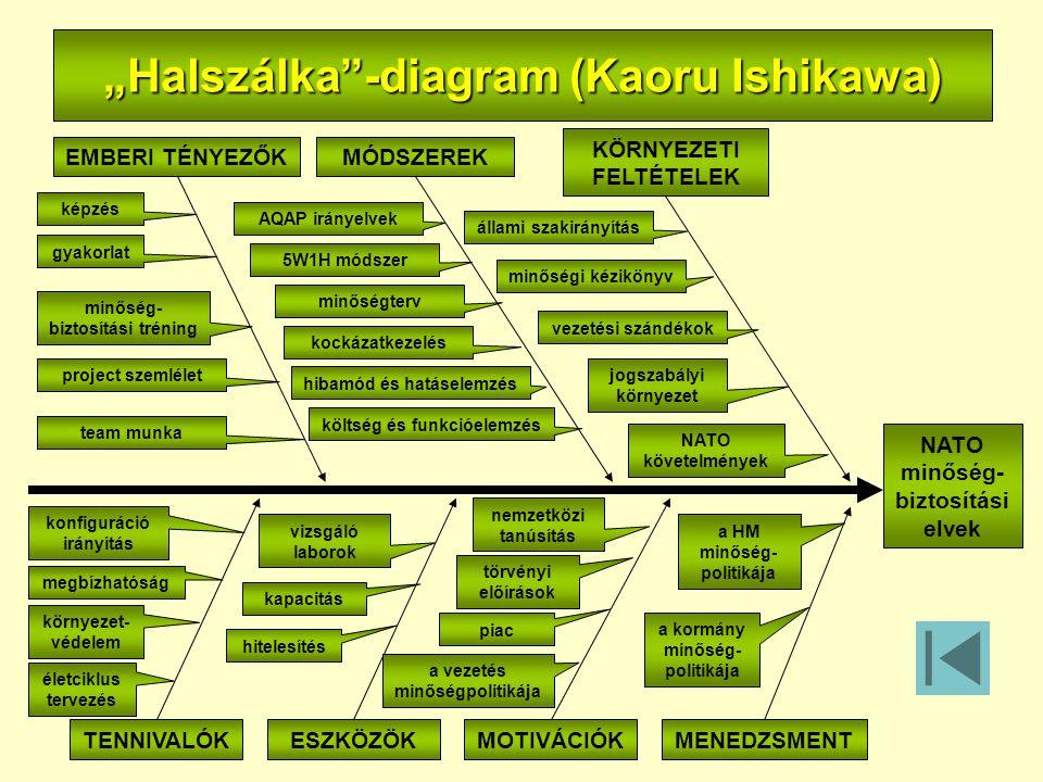 """""""Halszálka -diagram (Kaoru Ishikawa)"""