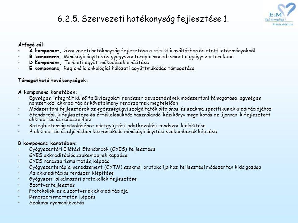 6.2.5. Szervezeti hatékonyság fejlesztése 1.