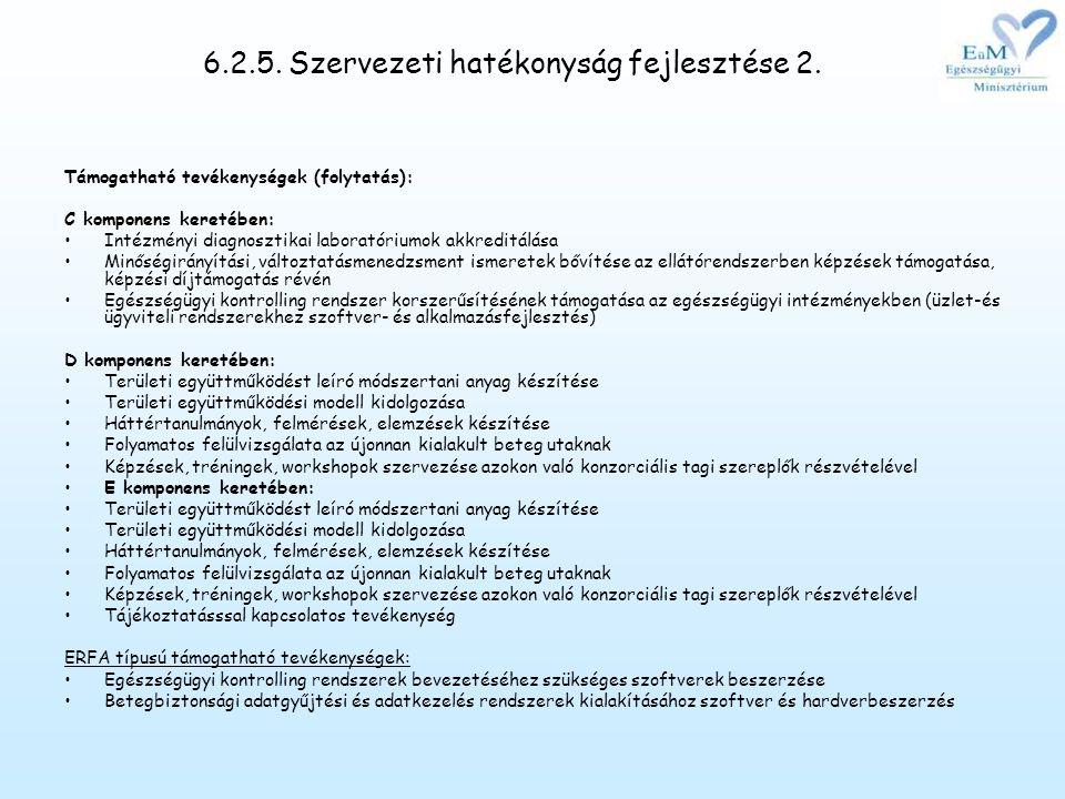 6.2.5. Szervezeti hatékonyság fejlesztése 2.