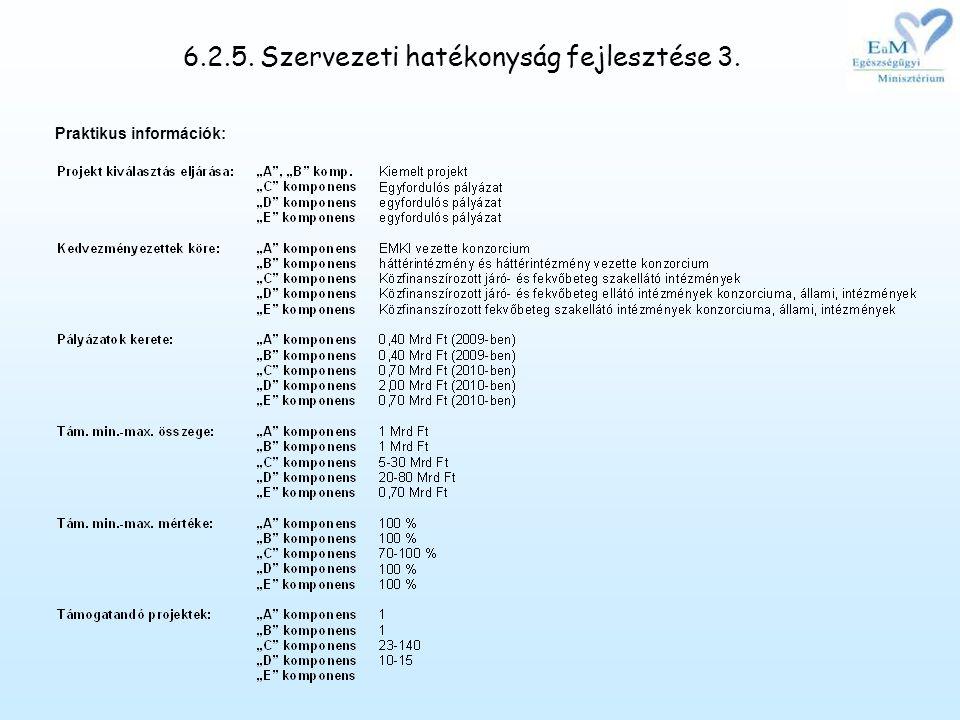 6.2.5. Szervezeti hatékonyság fejlesztése 3.