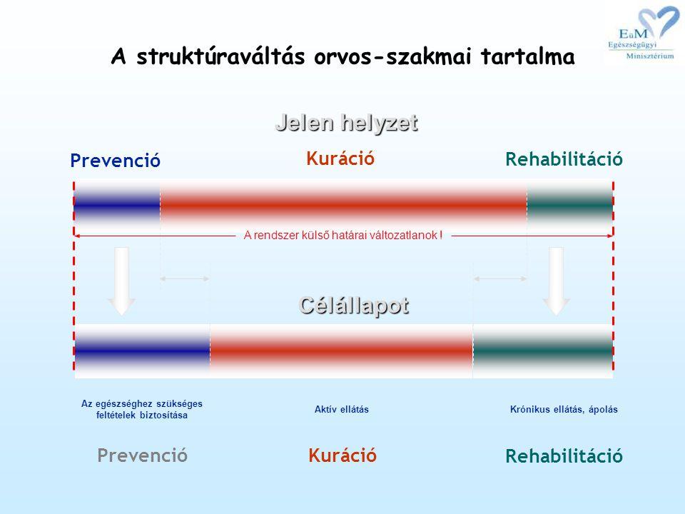 A struktúraváltás orvos-szakmai tartalma