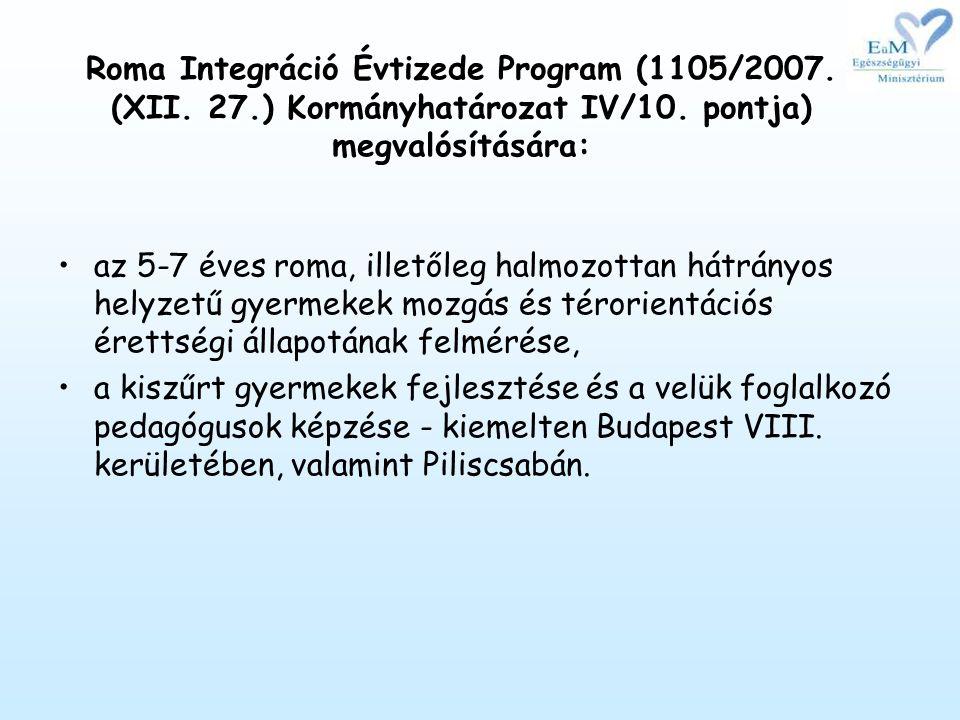 Roma Integráció Évtizede Program (1105/2007. (XII. 27