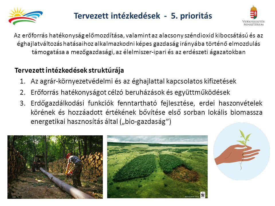 Tervezett intézkedések - 5. prioritás