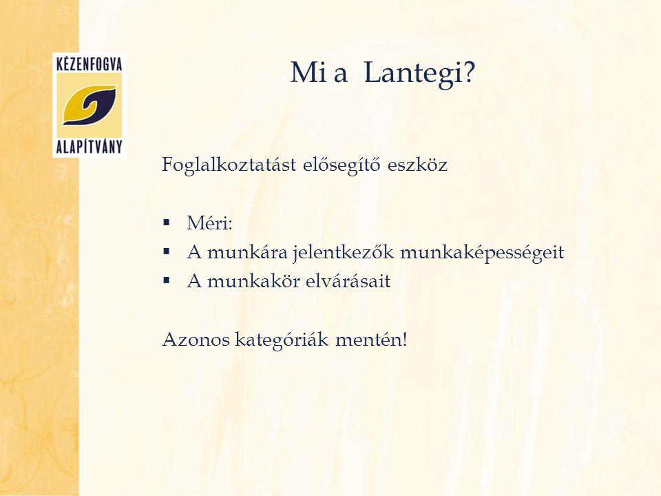 Mi a Lantegi Foglalkoztatást elősegítő eszköz Méri: