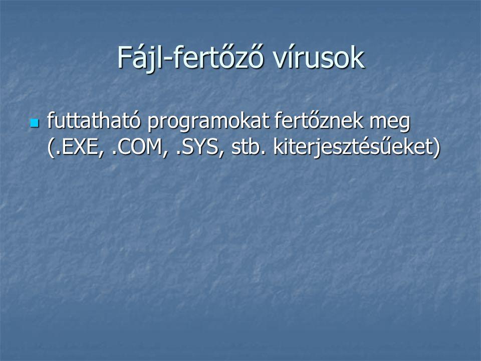 Fájl-fertőző vírusok futtatható programokat fertőznek meg (.EXE, .COM, .SYS, stb.