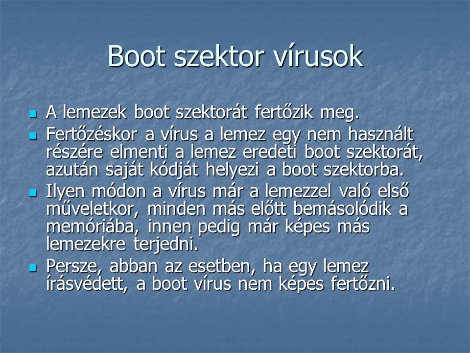 Boot szektor vírusok A lemezek boot szektorát fertőzik meg.