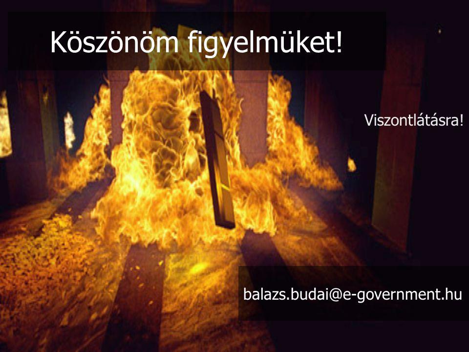 Köszönöm figyelmüket! Viszontlátásra! balazs.budai@e-government.hu