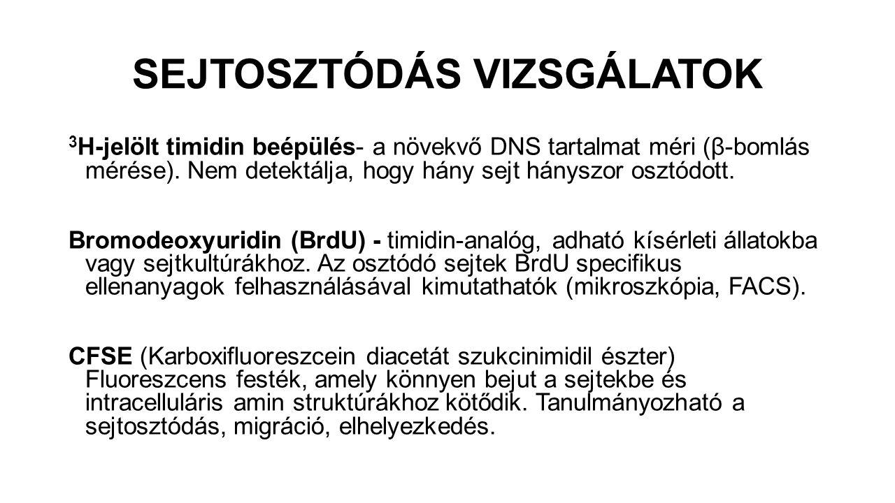 SEJTOSZTÓDÁS VIZSGÁLATOK