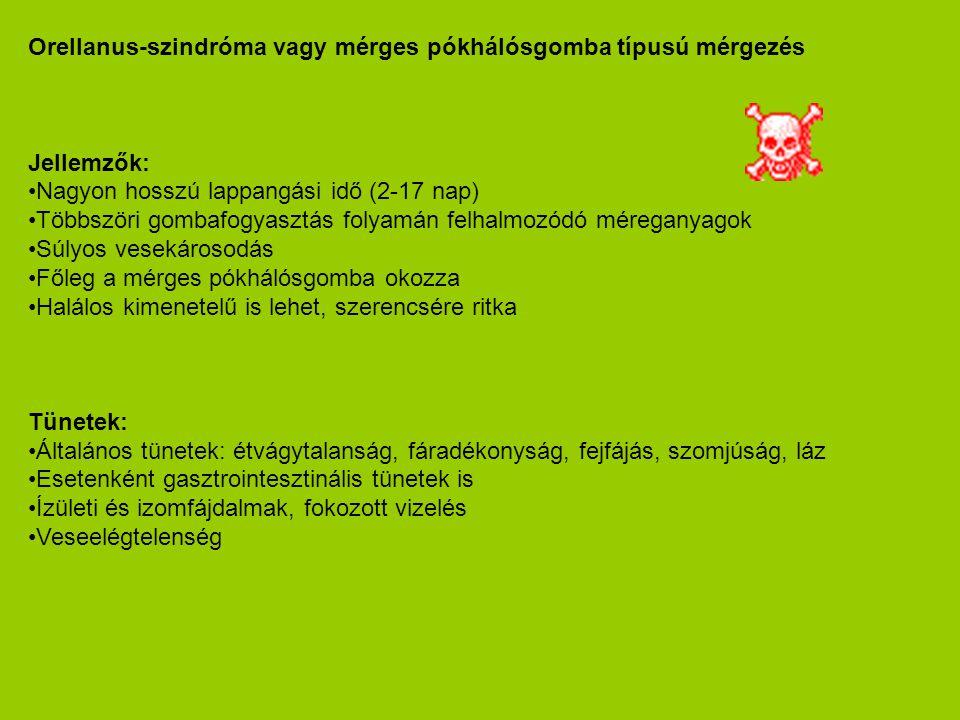 Orellanus-szindróma vagy mérges pókhálósgomba típusú mérgezés