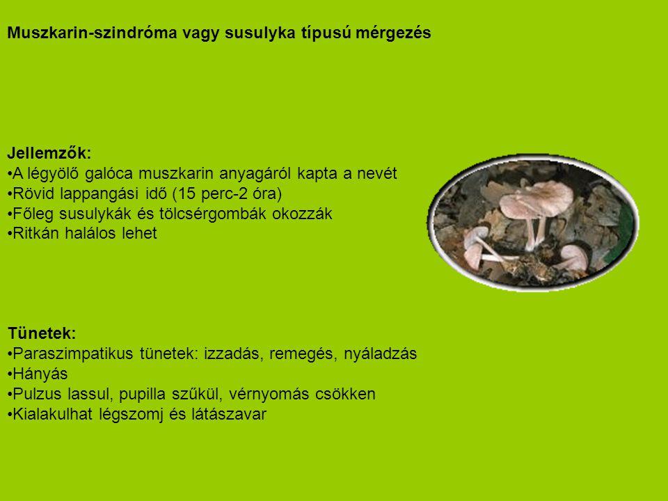 Muszkarin-szindróma vagy susulyka típusú mérgezés