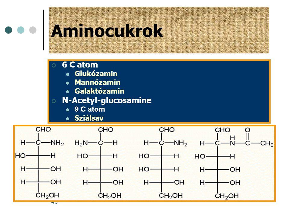 Aminocukrok 6 C atom N-Acetyl-glucosamine Glukózamin Mannózamin