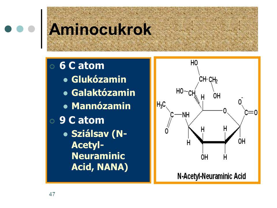 Aminocukrok 6 C atom 9 C atom Glukózamin Galaktózamin Mannózamin