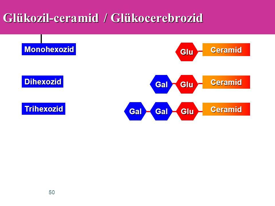 Glükozil-ceramid / Glükocerebrozid