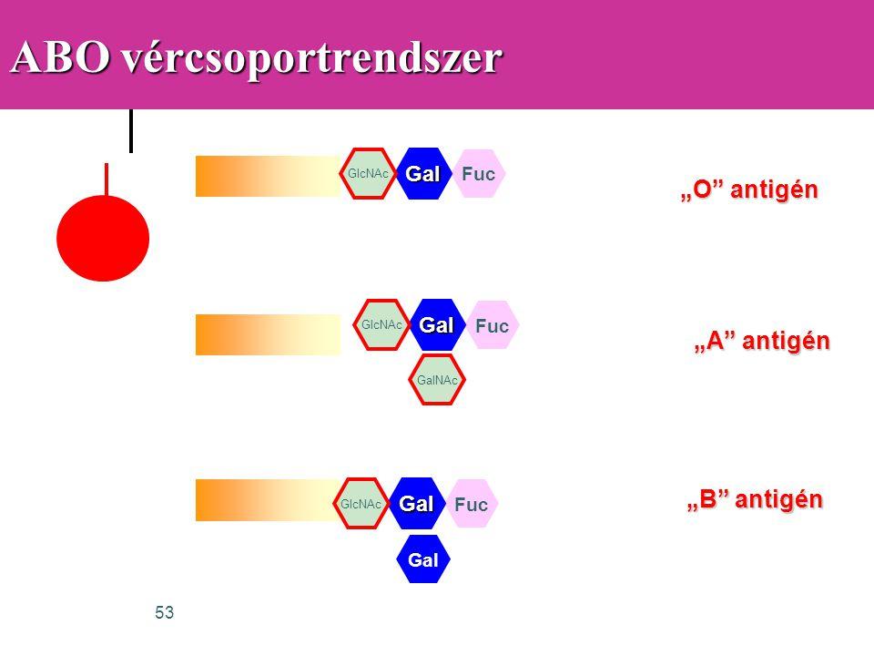 ABO vércsoportrendszer