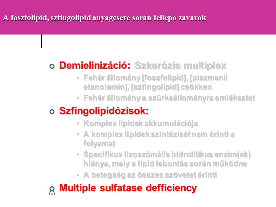 A foszfolipid, szfingolipid anyagcsere során fellépő zavarok