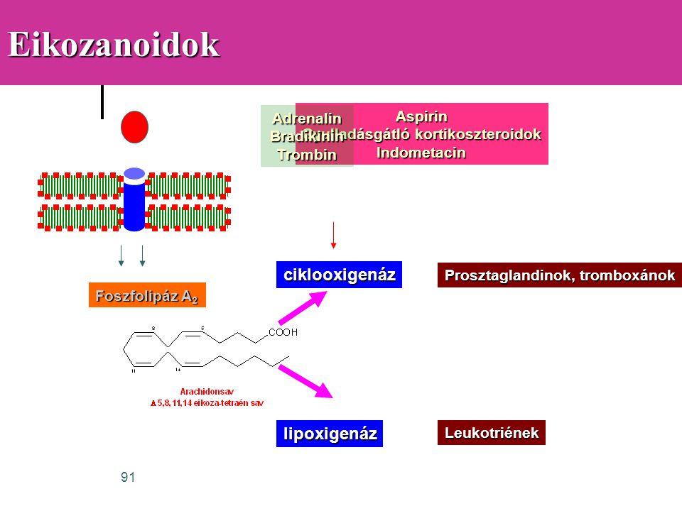 Gyulladásgátló kortikoszteroidok