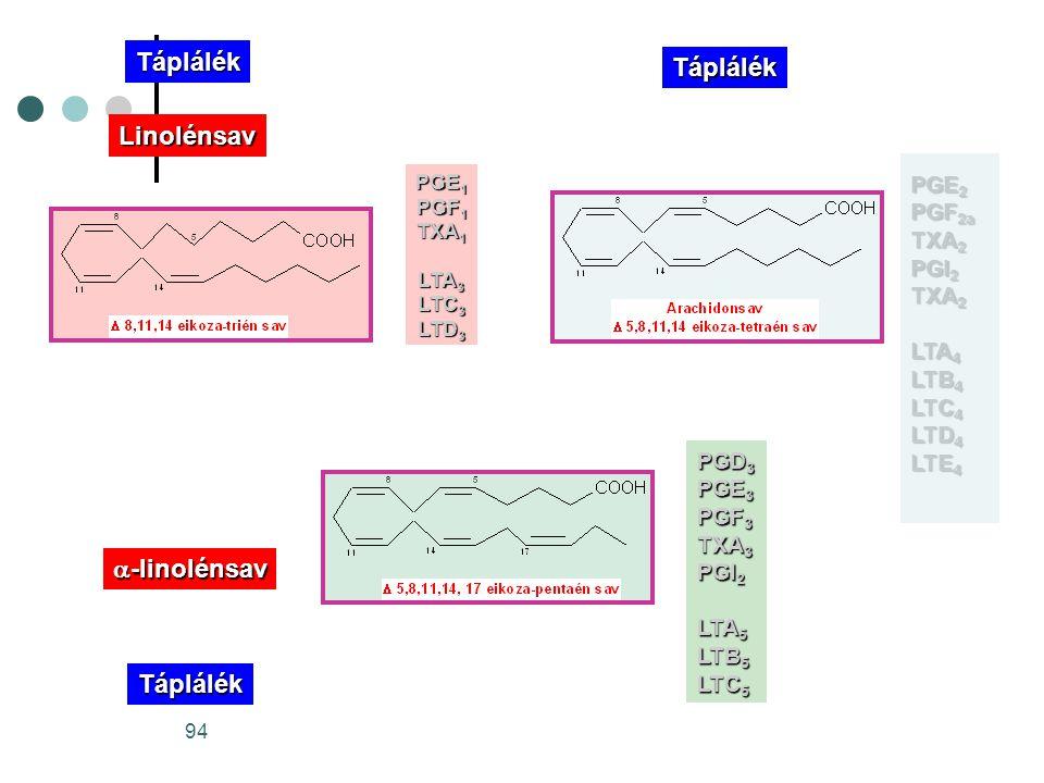 Táplálék Táplálék Linolénsav a-linolénsav Táplálék PGE2 PGF2a TXA2