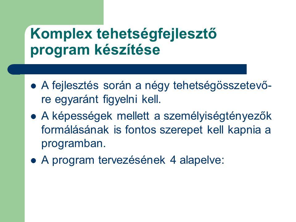Komplex tehetségfejlesztő program készítése