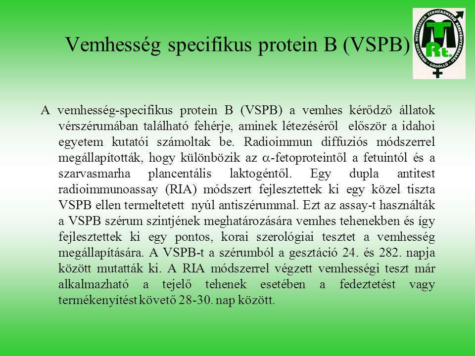 Vemhesség specifikus protein B (VSPB)