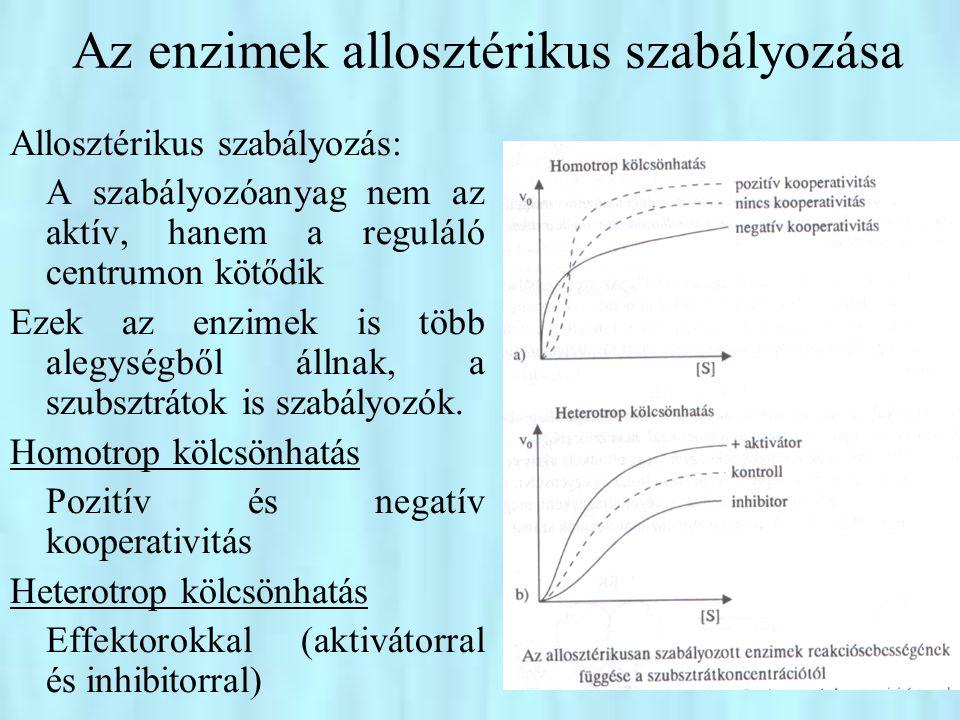 Az enzimek allosztérikus szabályozása