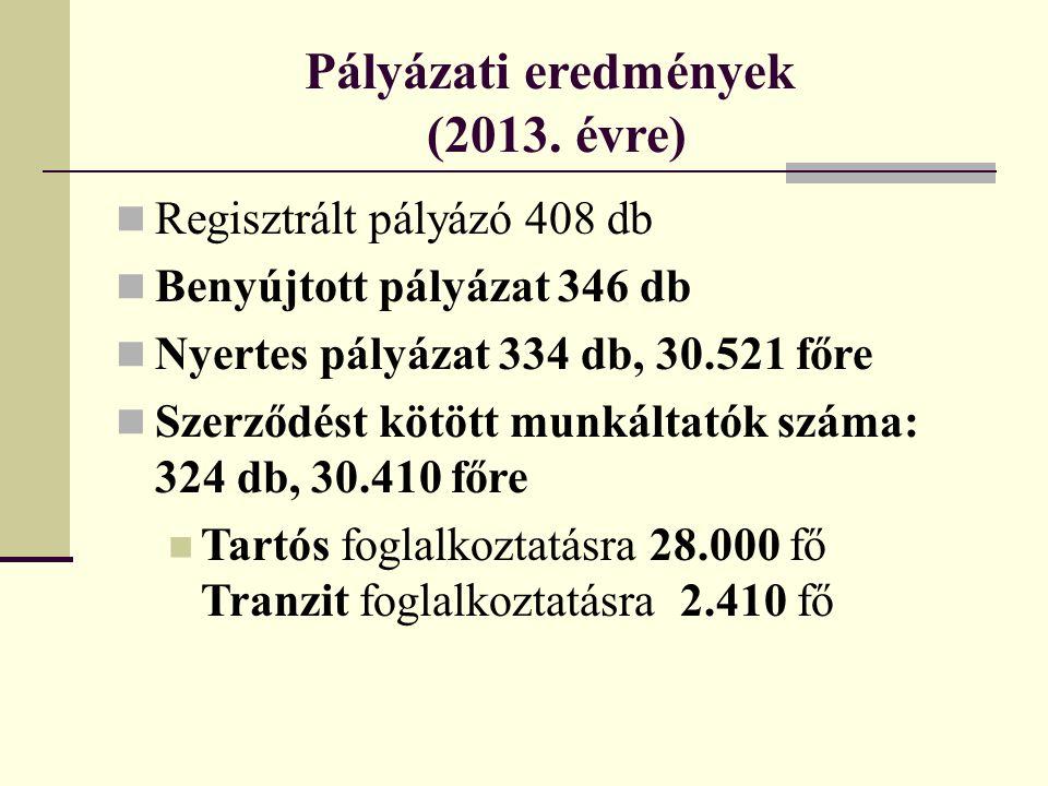 Pályázati eredmények (2013. évre)