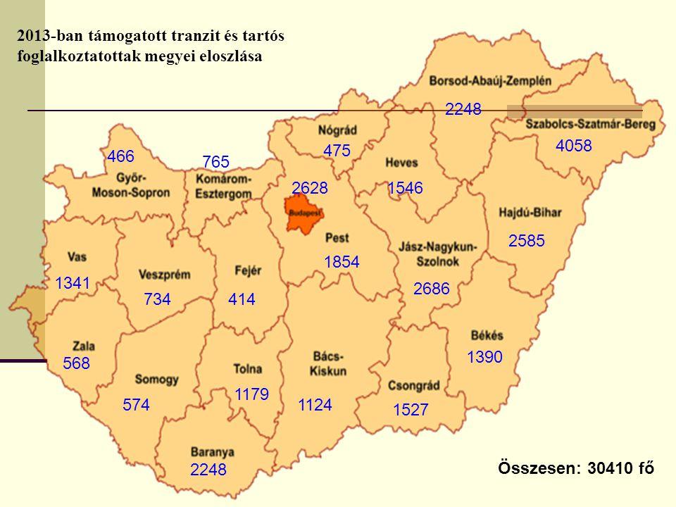 2013-ban támogatott tranzit és tartós foglalkoztatottak megyei eloszlása
