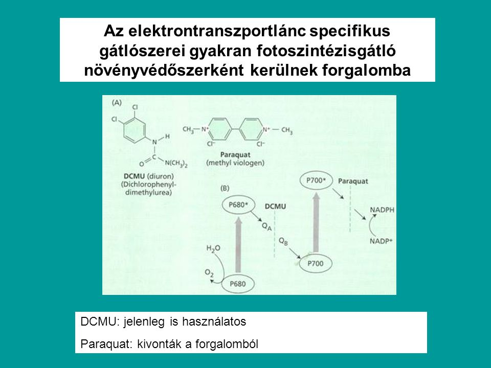 Az elektrontranszportlánc specifikus gátlószerei gyakran fotoszintézisgátló növényvédőszerként kerülnek forgalomba