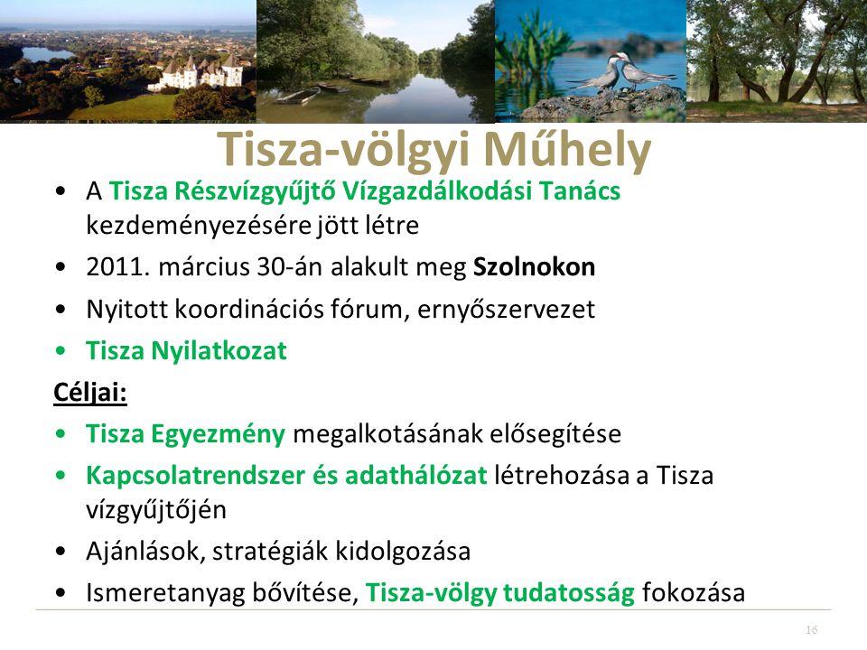 Tisza-völgyi Műhely A Tisza Részvízgyűjtő Vízgazdálkodási Tanács kezdeményezésére jött létre. 2011. március 30-án alakult meg Szolnokon.