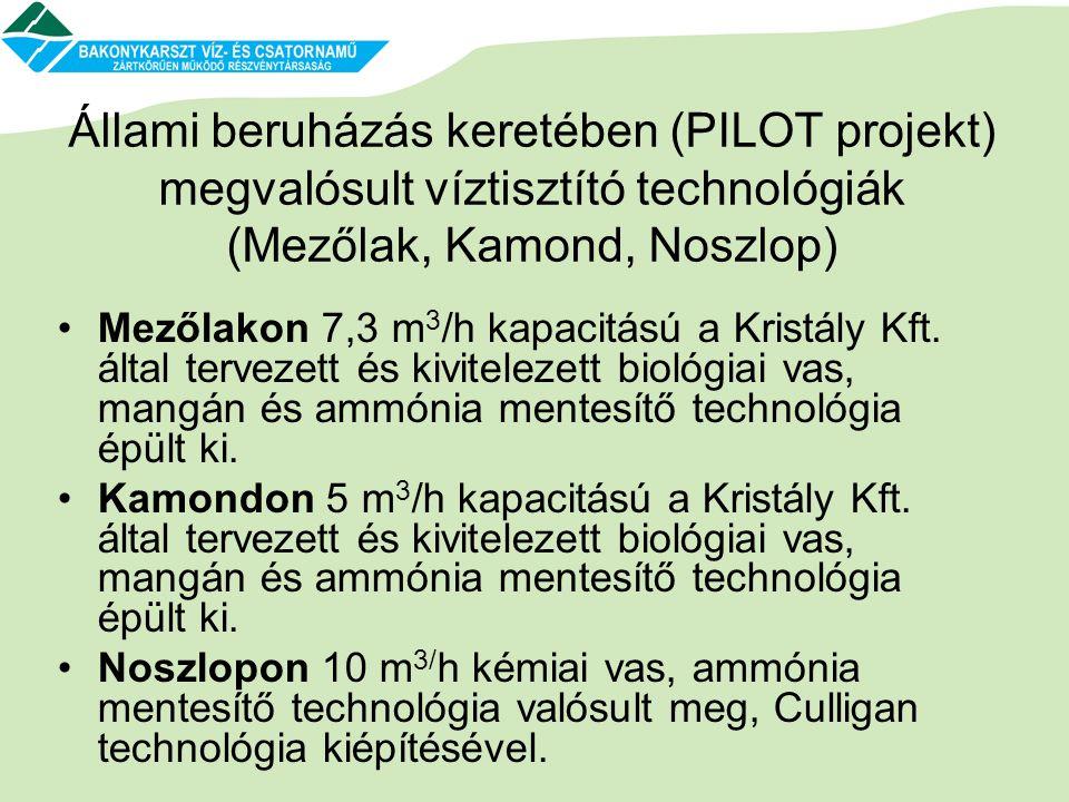 Állami beruházás keretében (PILOT projekt) megvalósult víztisztító technológiák (Mezőlak, Kamond, Noszlop)