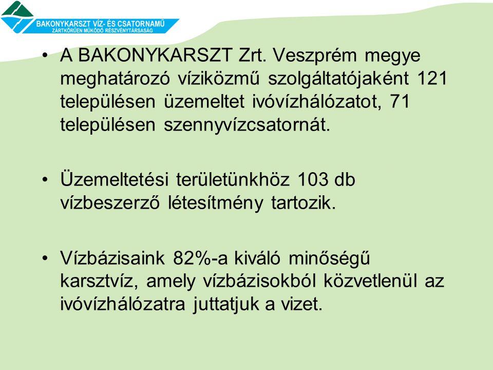 A BAKONYKARSZT Zrt. Veszprém megye meghatározó víziközmű szolgáltatójaként 121 településen üzemeltet ivóvízhálózatot, 71 településen szennyvízcsatornát.