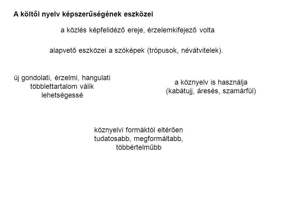 A költői nyelv képszerűségének eszközei