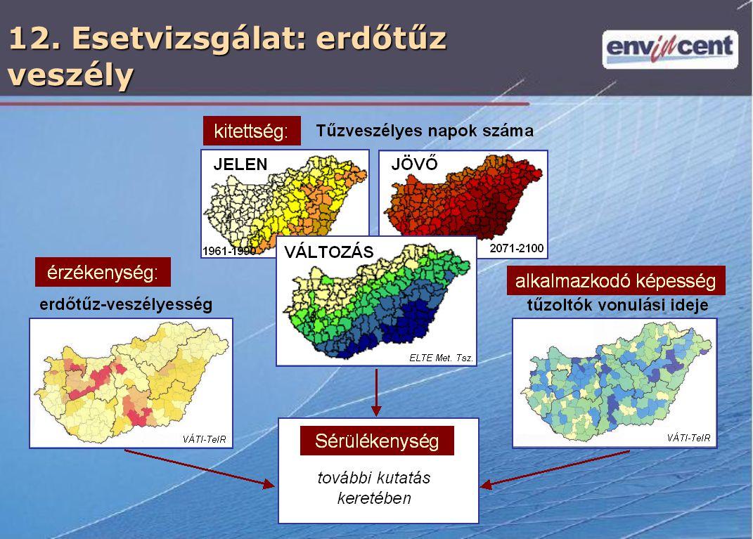 12. Esetvizsgálat: erdőtűz veszély