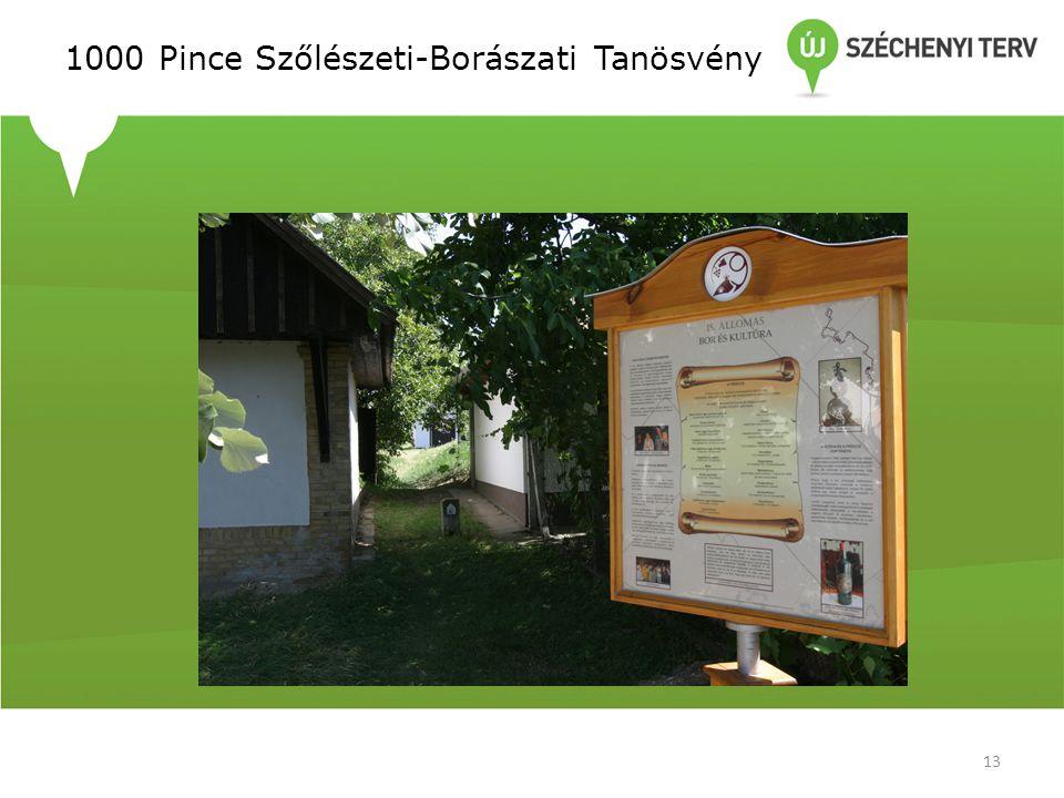 1000 Pince Szőlészeti-Borászati Tanösvény